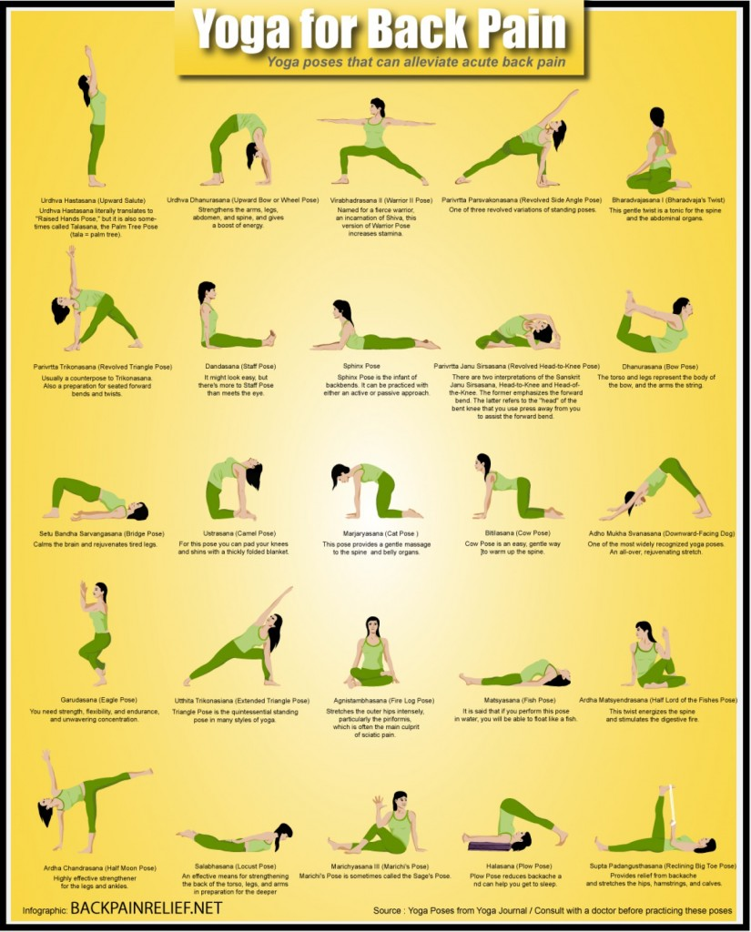 Yoga Poses For Back Pain Relief Infographic Ergonomics Fix